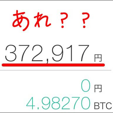 【ビットコイン】3万円購入予定が誤って30万円分買ってしまいました。